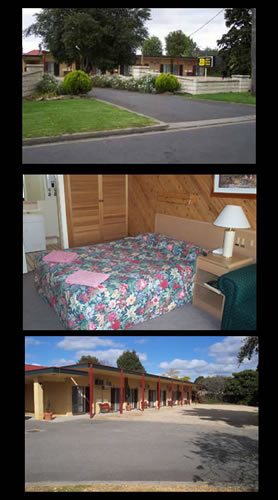 Ace Swan Motel - Accommodation BNB