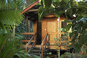 Cape Trib Beach House - Accommodation BNB