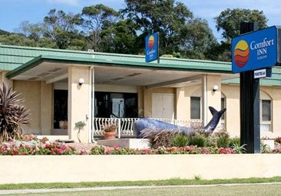 Comfort Inn Albany - Accommodation BNB