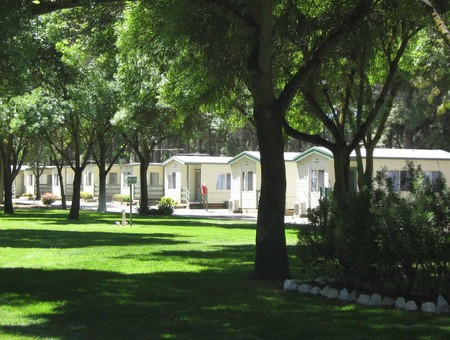 BIG 4 Barossa Tourist Park - Accommodation BNB