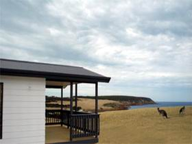 Waves and Wildlife - Accommodation BNB