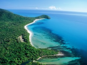 Cape Tribulation Camping - Accommodation BNB