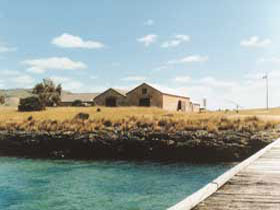 Mt Dutton Bay Woolshed Hostel - Accommodation BNB