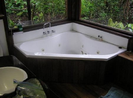 The Canopy Rainforest Tree Houses and Wildlife Sanctuary - Accommodation BNB