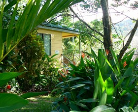 Daintree Valley Haven - Accommodation BNB