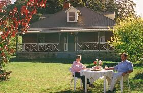 Hartzview Vineyard Homestead - Accommodation BNB