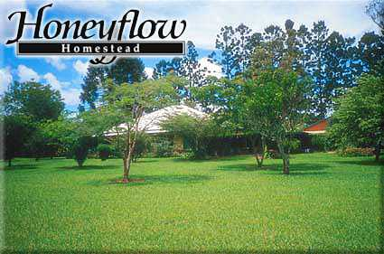Honeyflow Homestead - Accommodation BNB