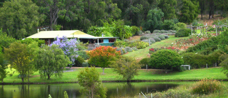 Lavender and Berry Farm - Accommodation BNB