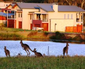 Grand Mercure The Vintage Hunter Valley - Accommodation BNB