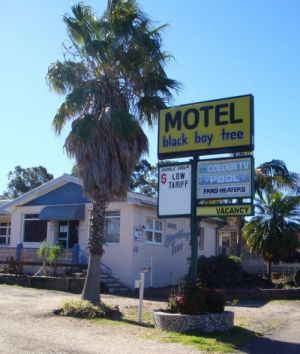 Blackboy Tree Motel - Accommodation BNB