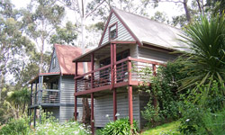 Great Ocean Road Cottages - Accommodation BNB