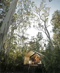 Paperbark Camp - Accommodation BNB