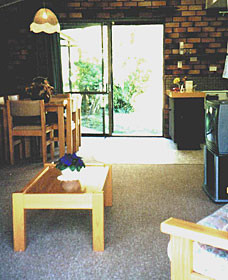 Falls Forest Retreat - Accommodation BNB