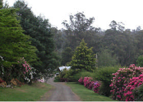 Mountain Rivers Lodge - Accommodation BNB