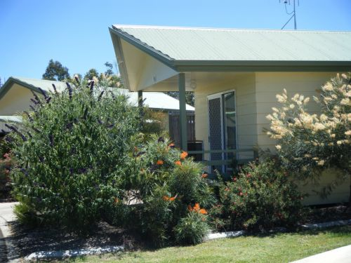 Pepper Tree Cabins - Accommodation BNB