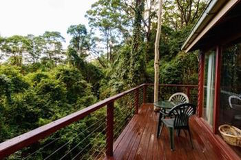 Kondalilla Eco Resort - Accommodation BNB