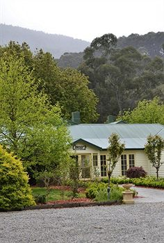Best Western Yarra Valley - Accommodation BNB