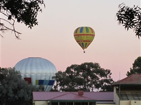 Barossa Valley Tourist Park - Accommodation BNB