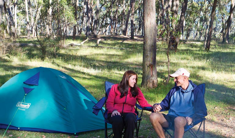 Apsley Falls campground - Accommodation BNB