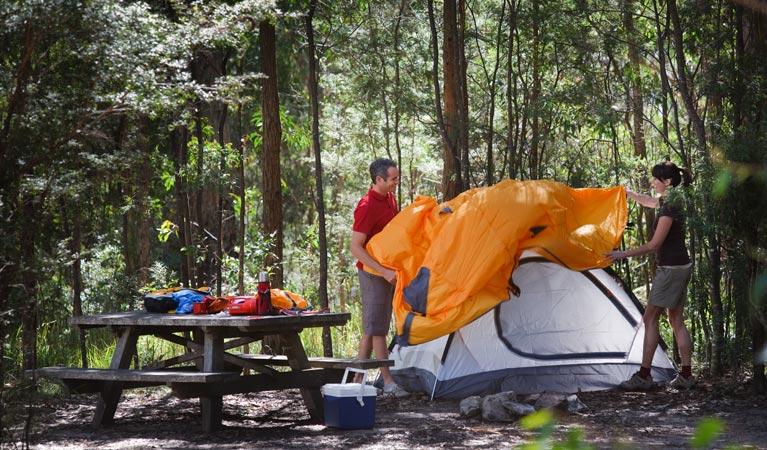 Bald Rock campground and picnic area - Accommodation BNB
