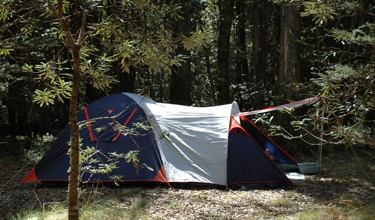 Thungutti campground - Accommodation BNB
