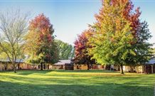 Laurel Hill Forest Lodge - Tumbarumba - Accommodation BNB