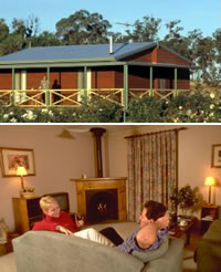 Twin Trees Country Cottages - Accommodation BNB