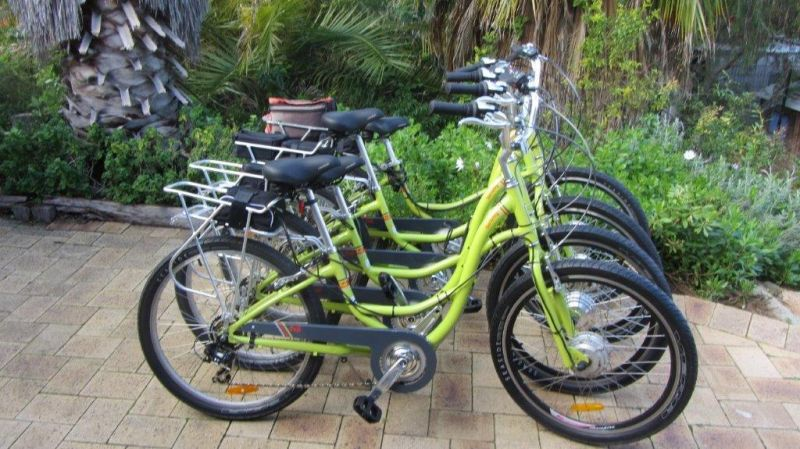 Paul's Eco E Bike Tours - Accommodation BNB