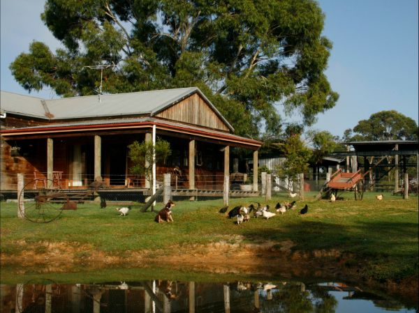 Tobruk Sydney Farm Stay - Accommodation BNB