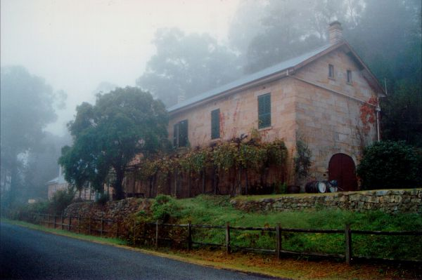 Tizzana Winery Bed And Breakfast - Accommodation BNB