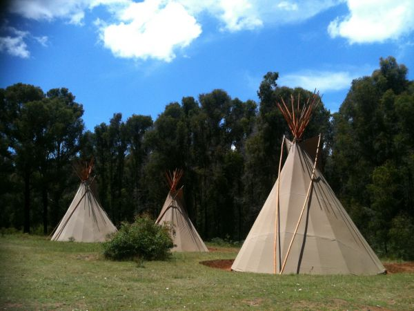 Kinglake Forest Adventures Camp - Accommodation BNB