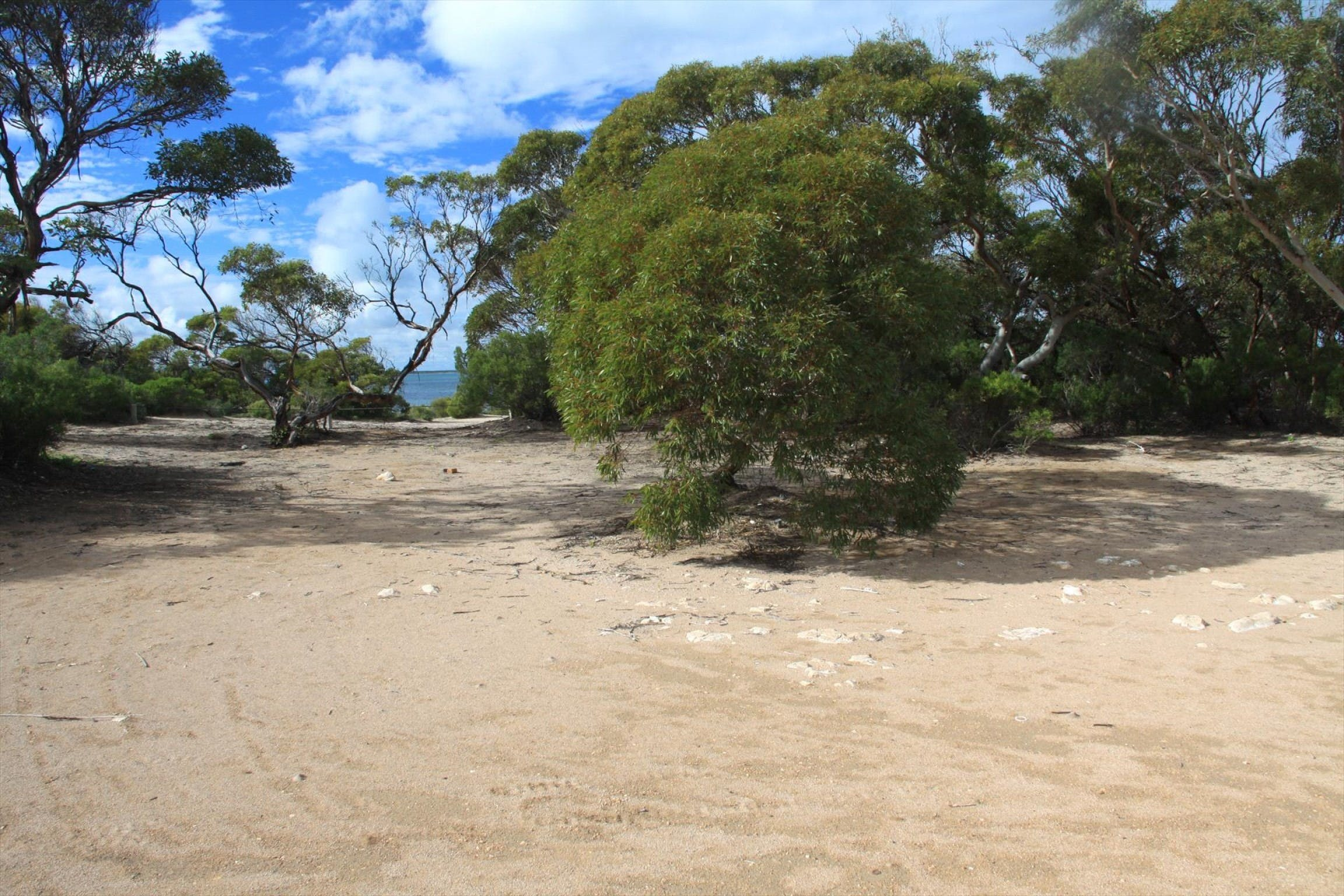 Acraman Creek Conservation Park Campgrounds - Accommodation BNB
