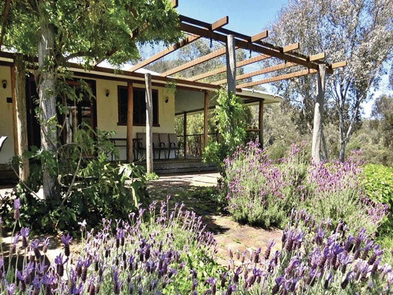 Capertee Homestead - 'Port Macquarie' - Accommodation BNB