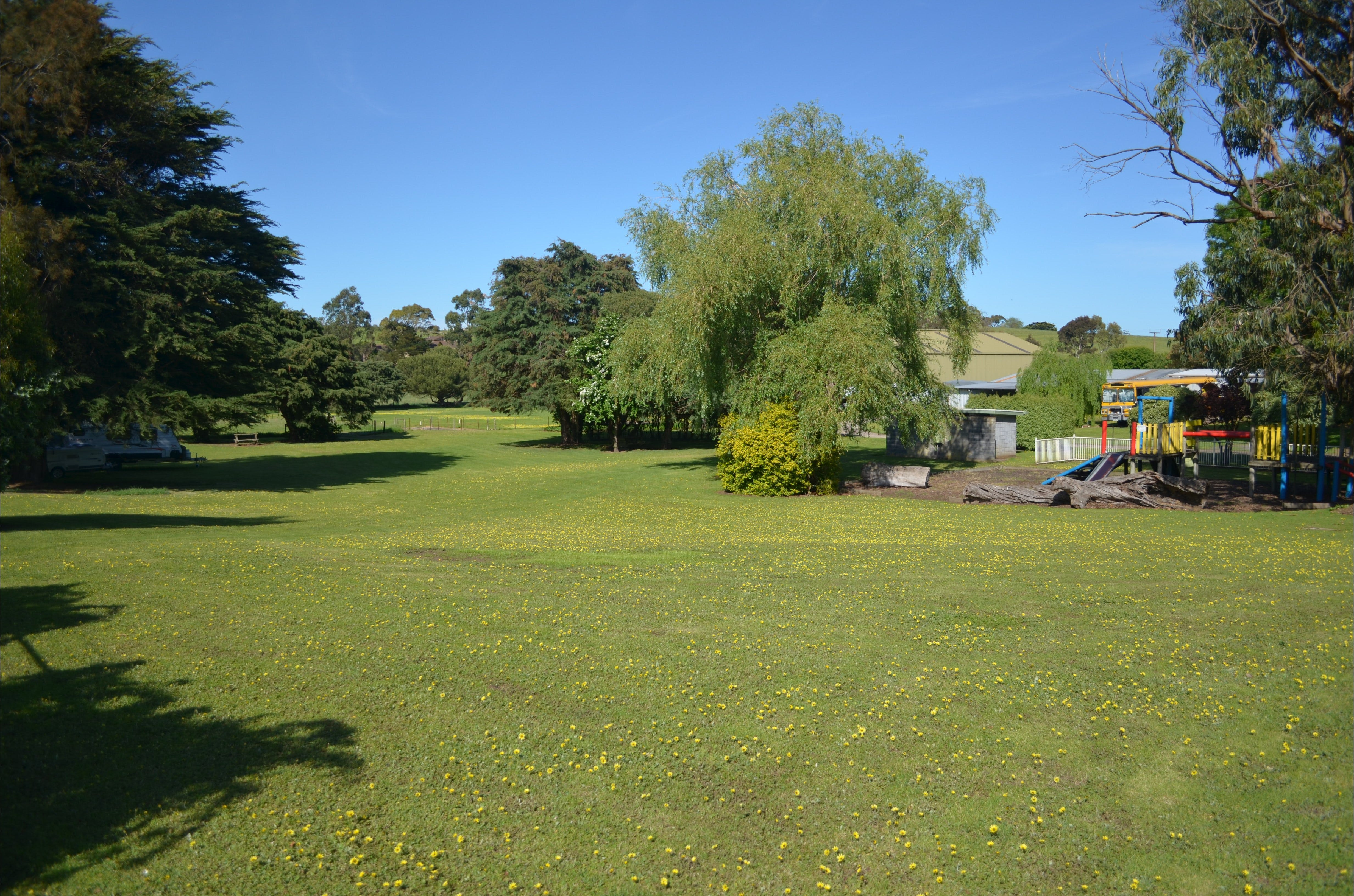 Pine Country Caravan Park - Pet Friendly - Accommodation BNB