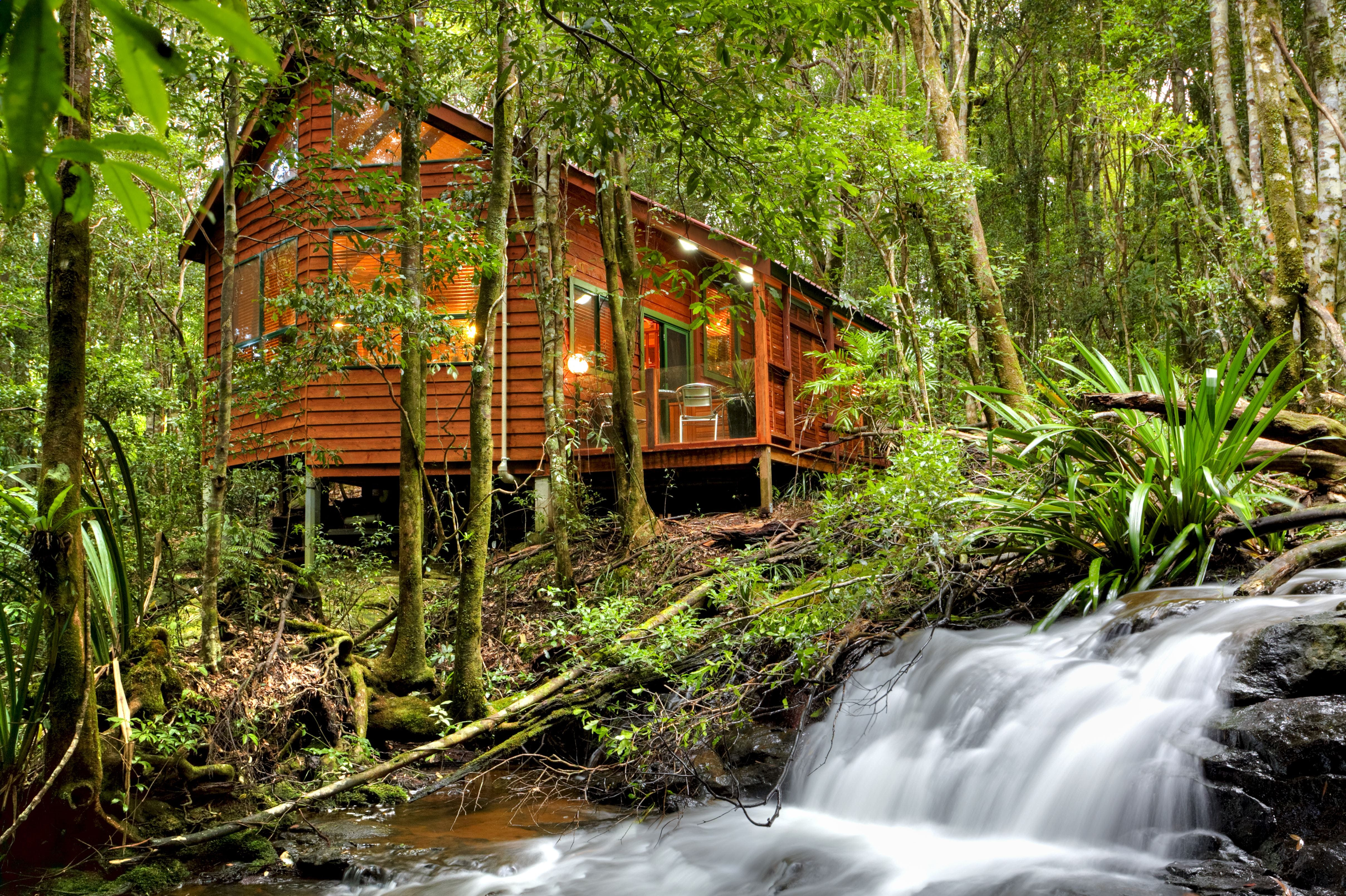 The Mouses House - Rainforest Retreat - Accommodation BNB