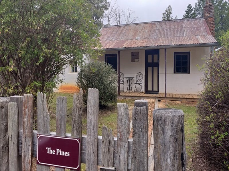 Hill End Pines Cottage - Accommodation BNB