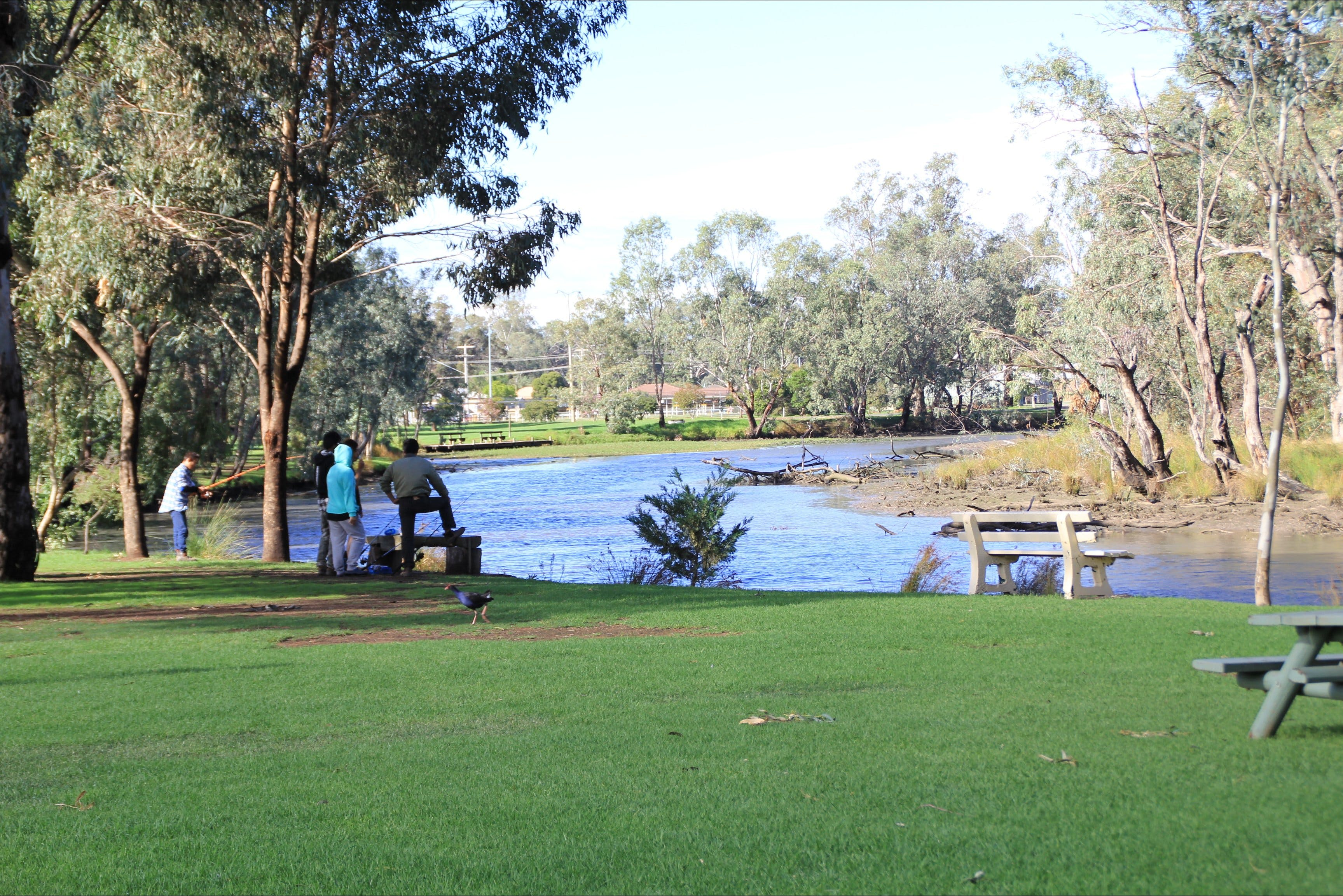 Numurkah Caravan Park - Accommodation BNB