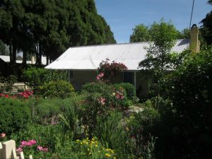 Jellore Cottage - Accommodation BNB