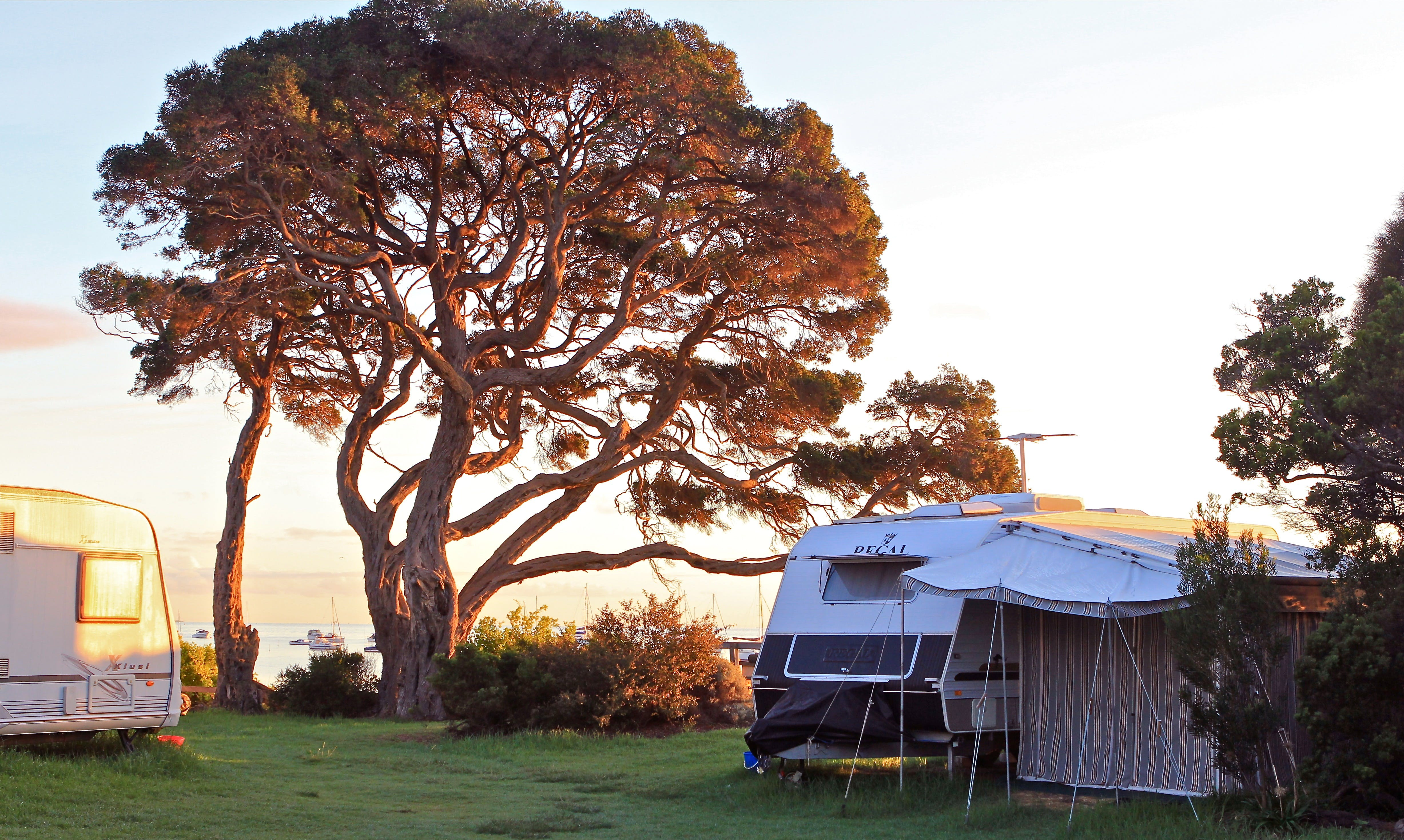WhiteCliffs to Camerons Bight Foreshore Reserve - Accommodation BNB