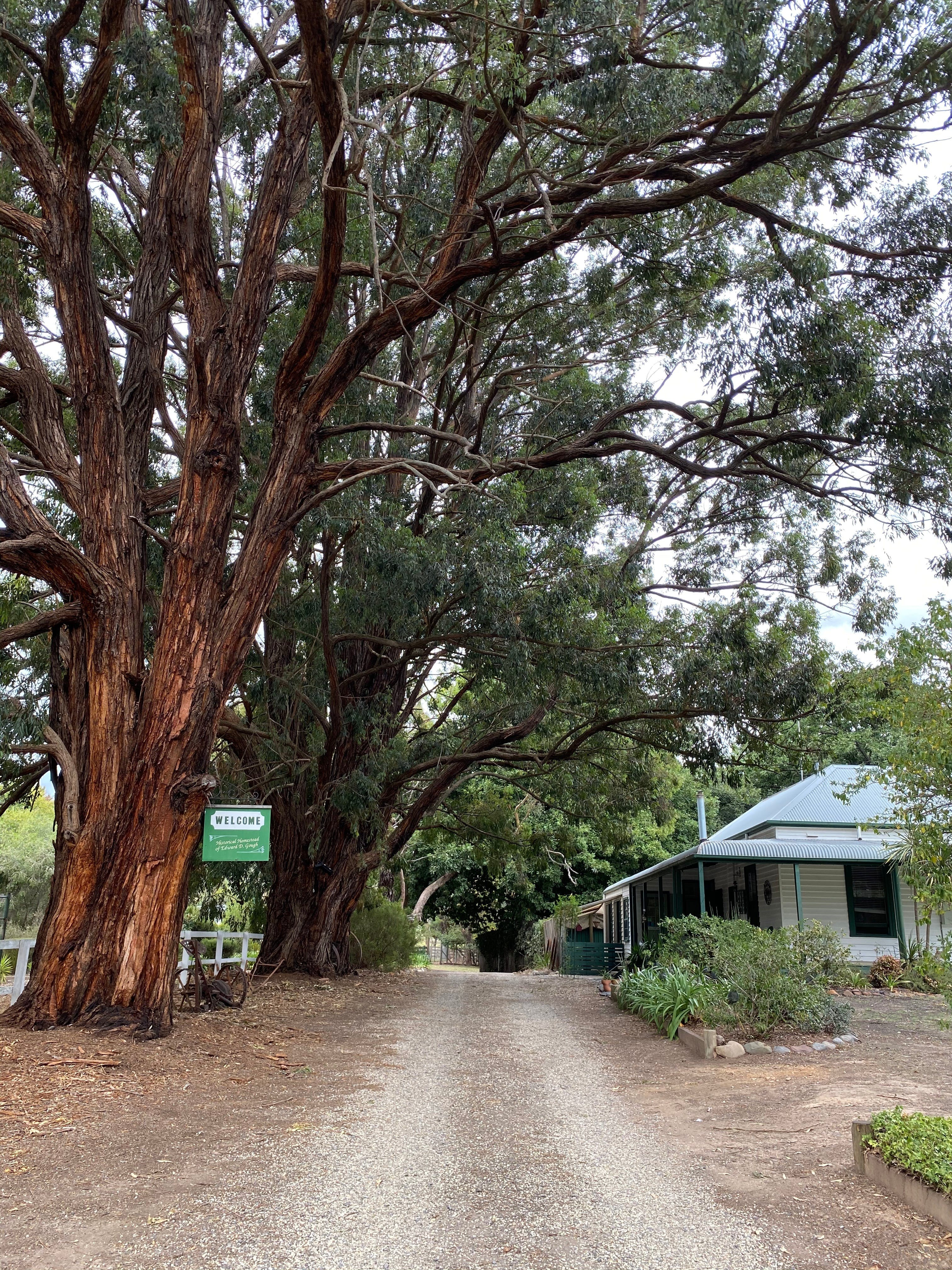 Fernleigh Accommodation - Accommodation BNB
