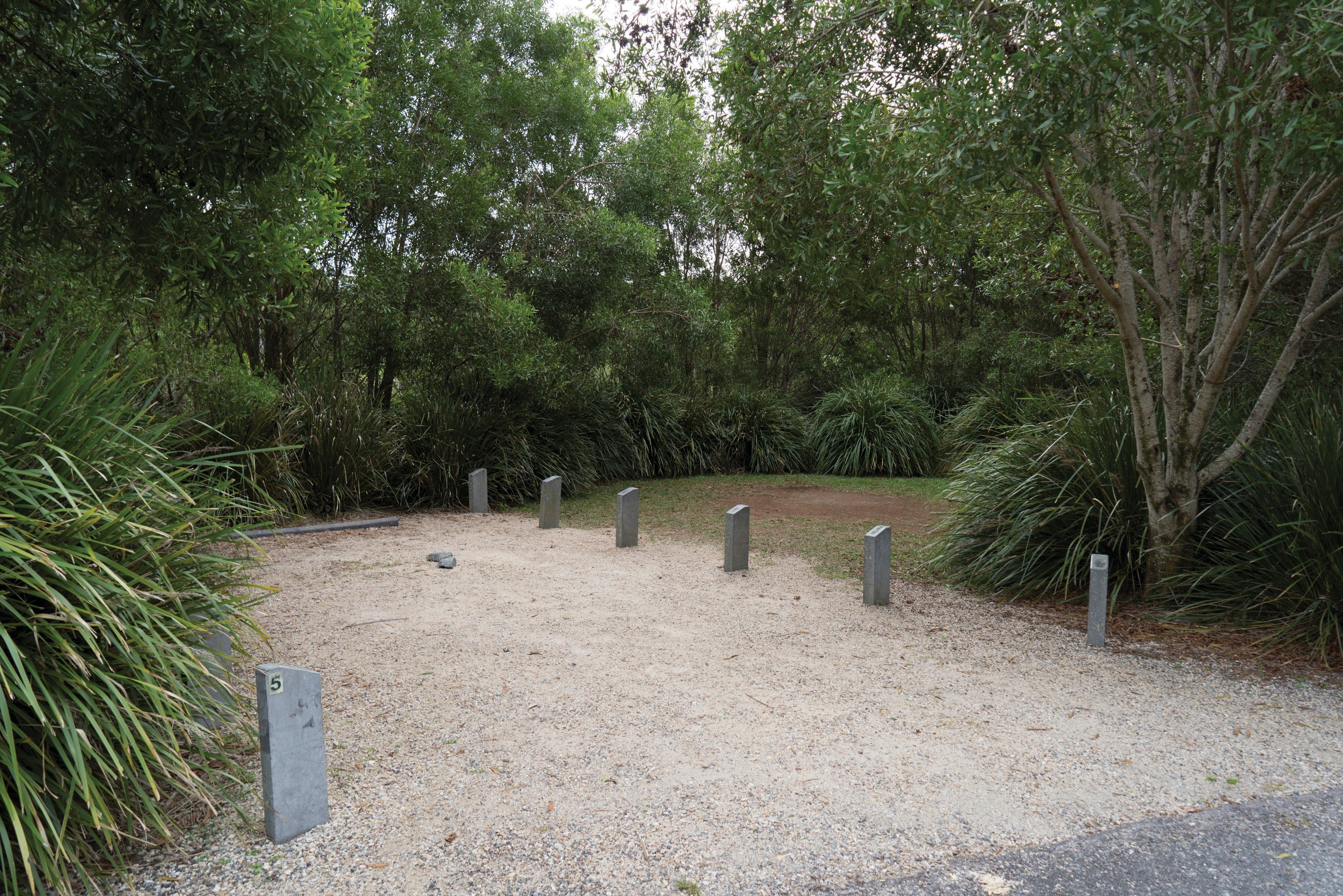 Springbrook National Park camping - Accommodation BNB