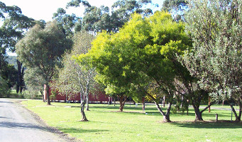 Otways Tourist Park - Accommodation BNB