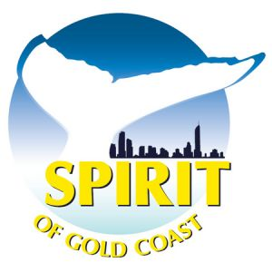 Spirit of Gold Coast Whale Watching - Accommodation BNB