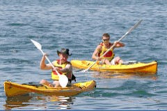 Manly Kayaks - Accommodation BNB