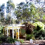 Koala Conservation Centre - Accommodation BNB