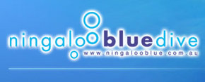 Ningaloo Blue Dive - Accommodation BNB