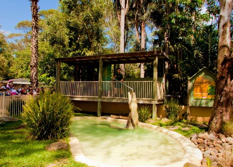 Featherdale Wildlife Park - Accommodation BNB