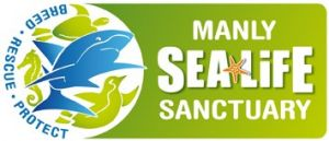 Manly SEA LIFE Sanctuary - Accommodation BNB