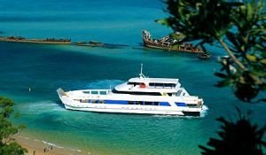 Queensland Day Tours - Accommodation BNB