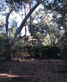 Ghost House Walk Trail Yanchep National Park - Accommodation BNB